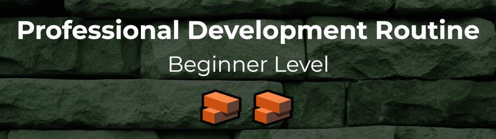 Beginner level professional development routine