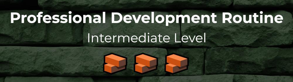 intermediate professional development routine